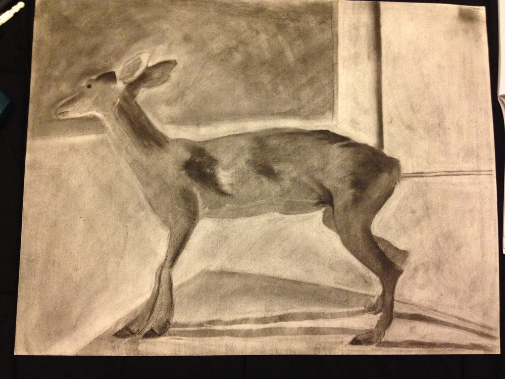 Deer  - Charcoal on paper - 2003