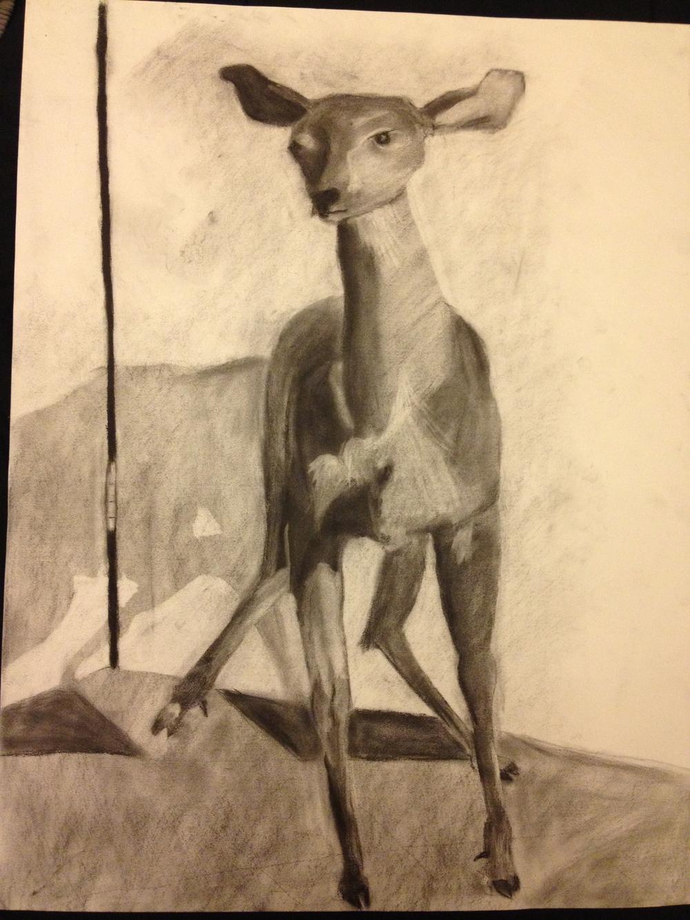 Deer  -  Charcoal on paper - 2003