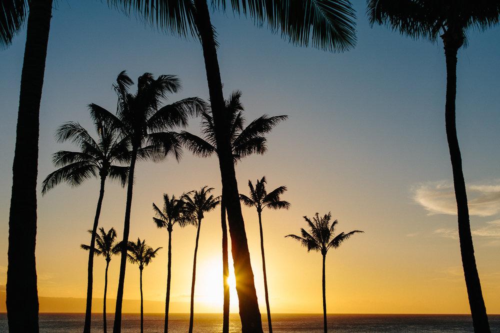 Hawaii_Maui_Dragana_P-12.jpg