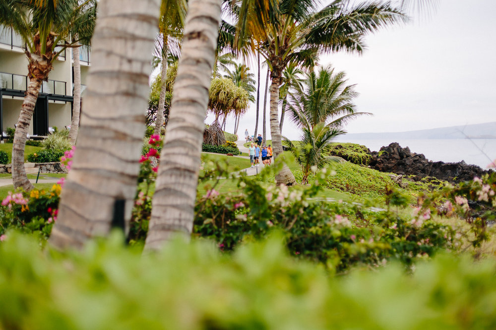 Hawaii_Maui_Dragana_P-15.jpg
