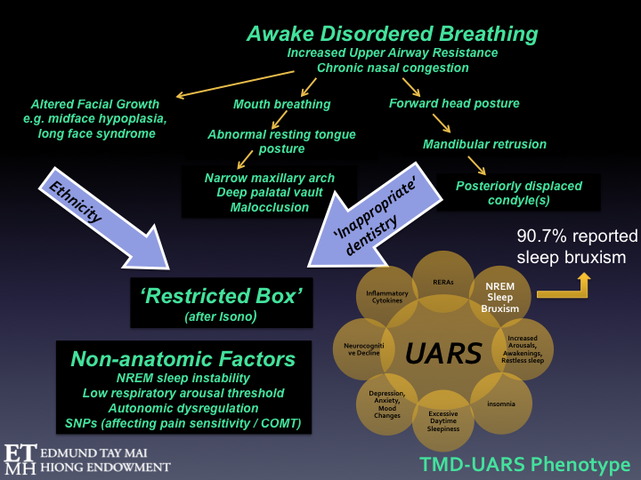 Fig. 22       Our postulate on how the TMD-UARS phenotype may have originally developed as an adaptive response to 'awake' disordered breathing [2]. The Southern Chinese craniofacial morphology has been previously implicated in sleep disordered breathing but uninformed dentists may further exacerbate the 'Restricted Box' by inappropriate treatment ( e.g. retractive orthodontics with 4 bicuspid extractions and/or rigid adherence to Gnathologic dogma ) of these morpho-functional adaptations ( including dental malocclusion ) to the patient's pre-existing awake disordered breathing. An interdisciplinary team approach is advocated.