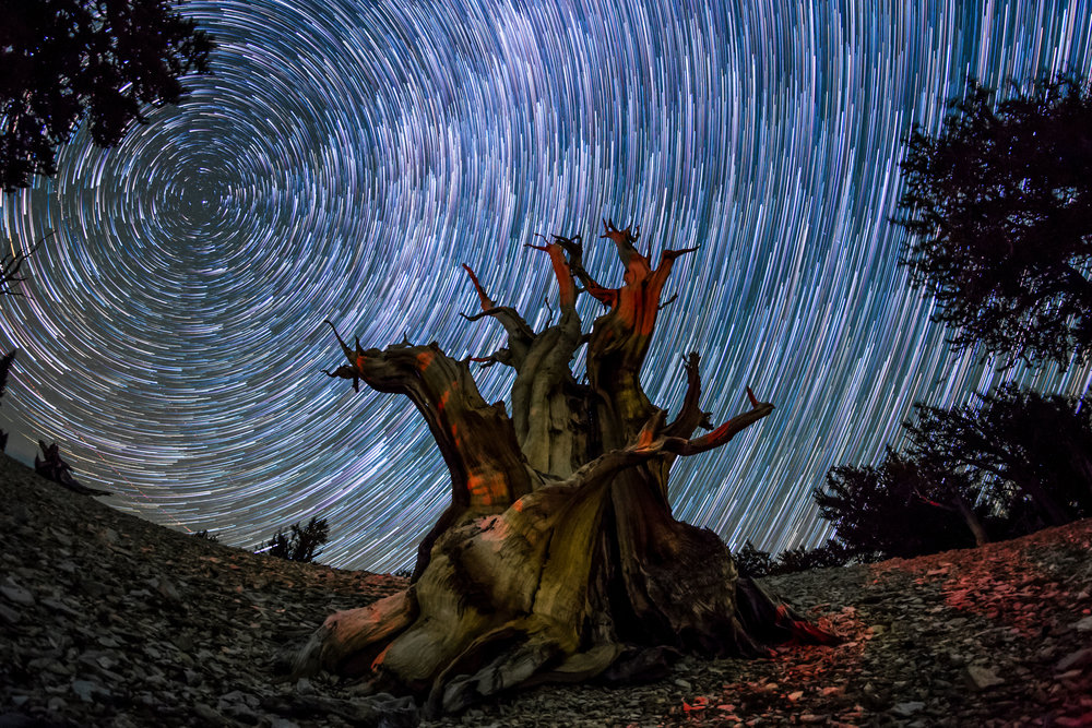 This incredible time-lapse project is exploring the best night skies in North America