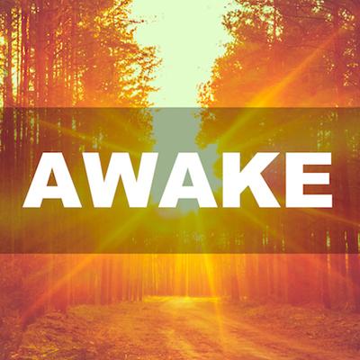 AWAKE thumb nail.jpg