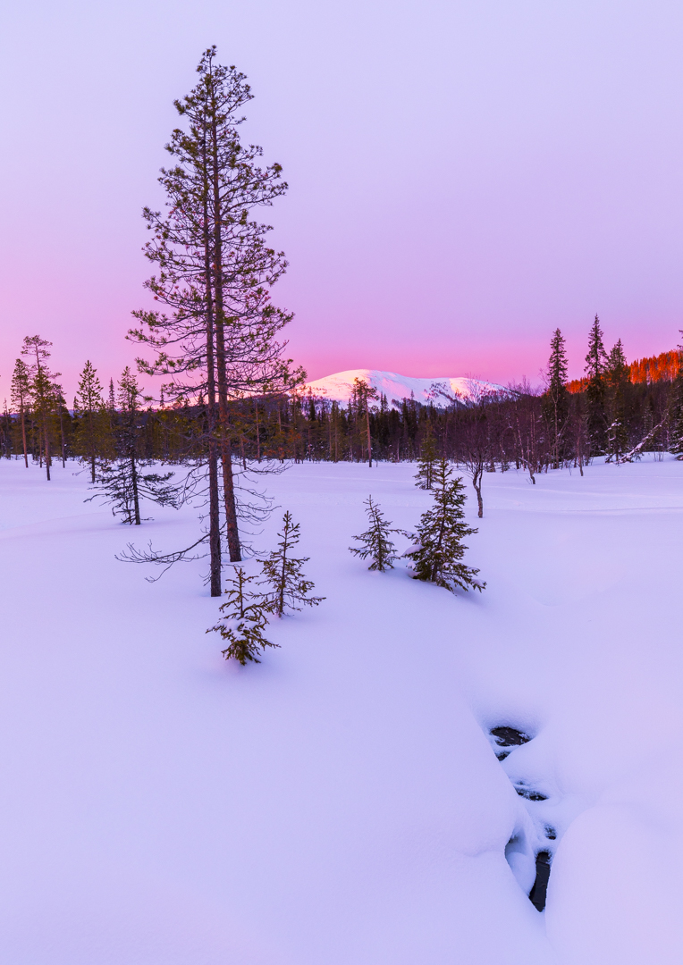 Amethyst Nightfall Pallas- Yllästunturi National Park, Finland - 2017