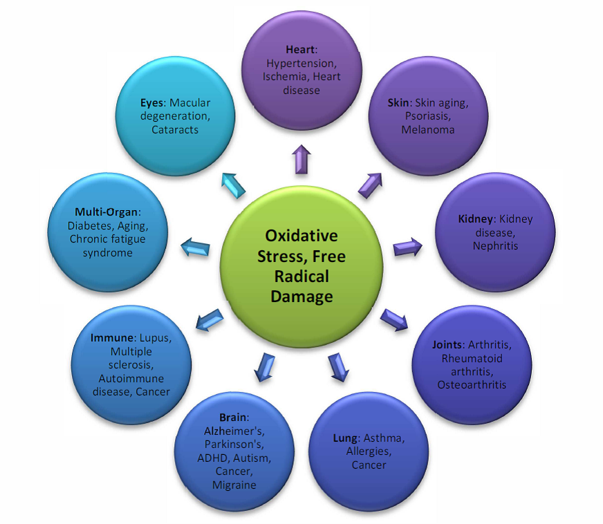 oxidative-stress-correlations.png