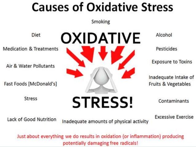 oxidative-stress-and-disease-4-638.jpg