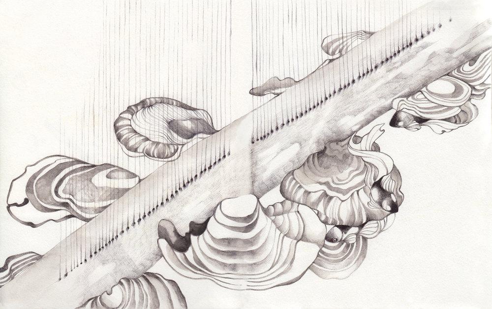 Scan 11-11-11.jpg