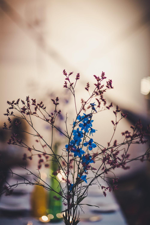 The Morning | Vincent Mockart | NSlagmolen | 33_.jpg
