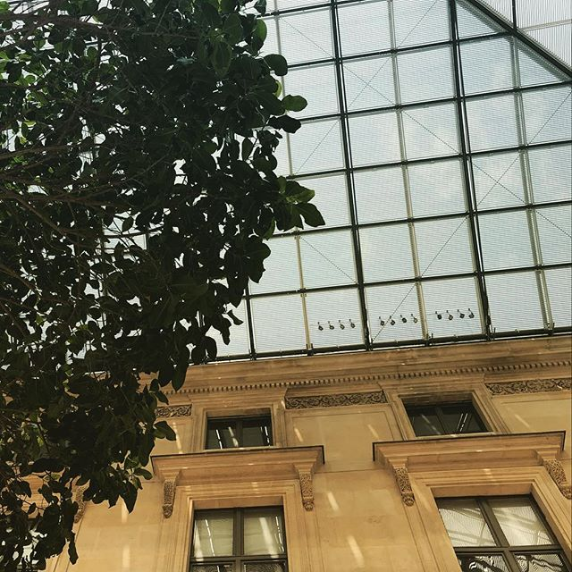 The Sky is the Limit #france #paris #louvre #nature #photography #architecture #sky #roof #ceiling #glass #structure #jadore #lovethis #tree #indoor #palais #royale #museum #limitless #up #jealous #look #best #showoff #bragging