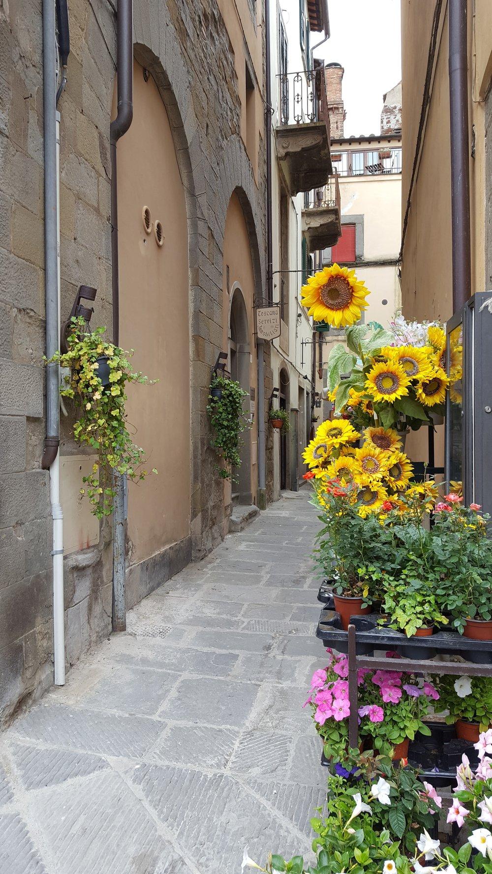 A small Cortonese street