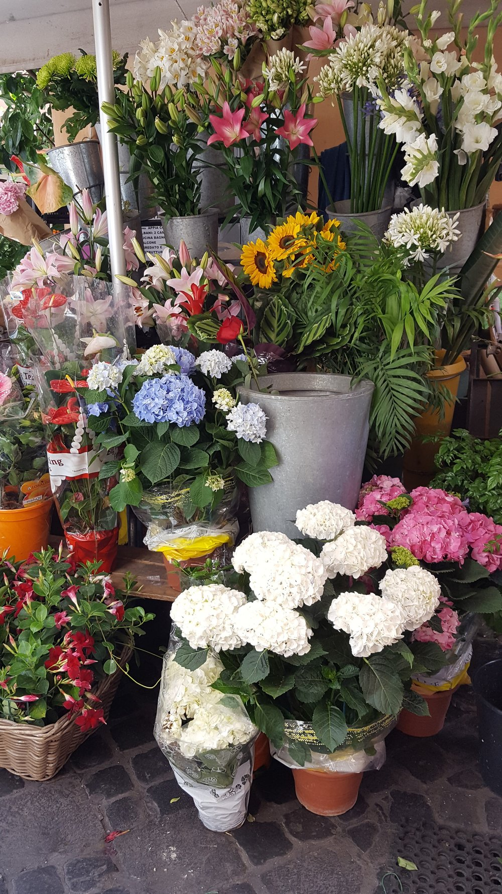 Neighborhood florist in Tridente