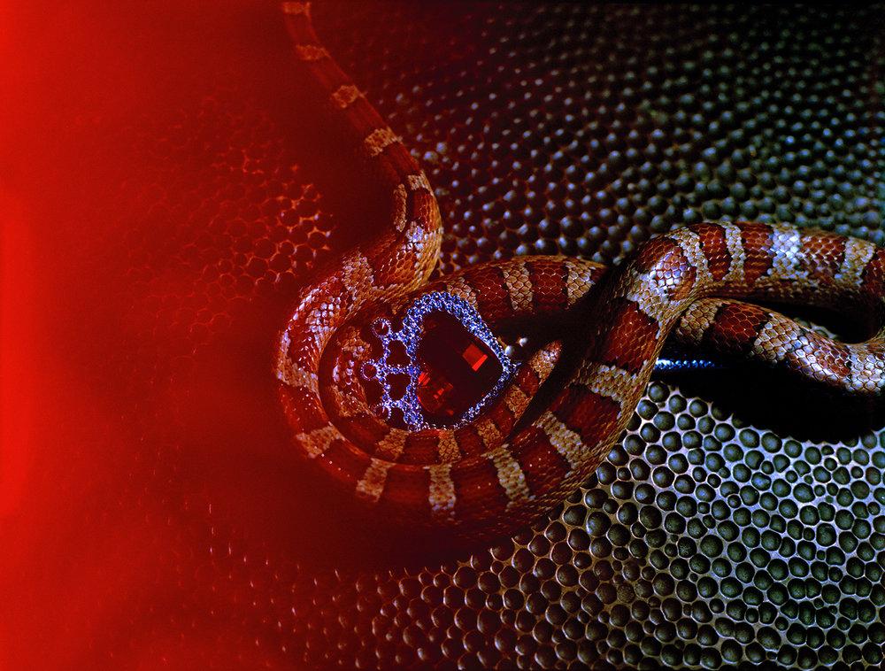 snakeheart.jpg