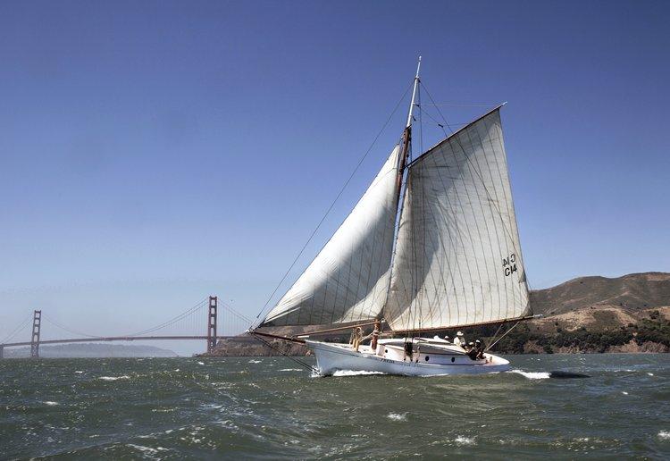 Freda sail.jpg