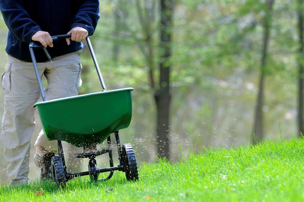 lawn fertiliation