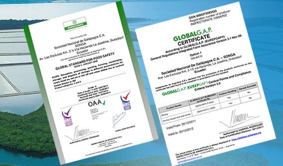 banner_animado_internas_certificado2.jpg