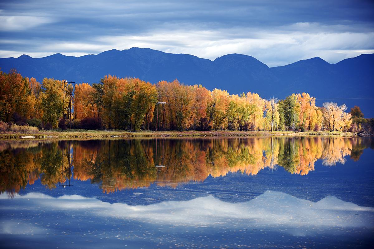 Serene Scene along the Flathead River