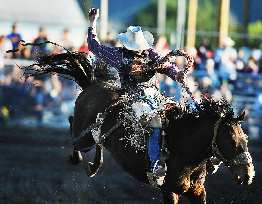 James Irish of Lewiston, Montana, rides Easy Does It for a score of 73 on Saturday night, Aug. 20, at the rodeo at the Northwest Montana Fair in Kalispell. (8/20/11)