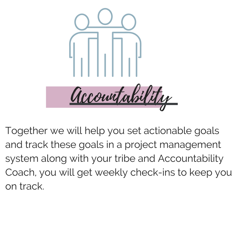 accountabilityGROUP-ACCOUNTABILITY PARTNER.png