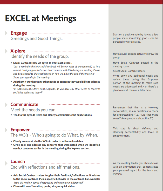 EXCEL at Meetings