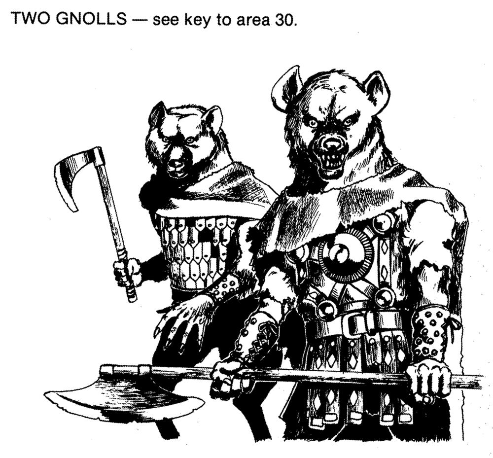 twognolls.png