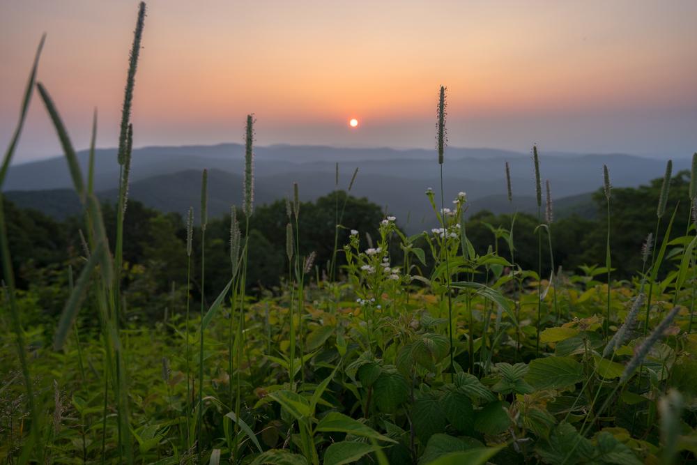 Reddish Knob, West Virginia