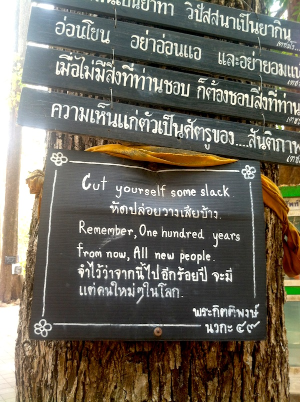 "Wat Umong's Talking Trees: ""Cut yourself some slack. Remember, 100 years from now, All new people."""