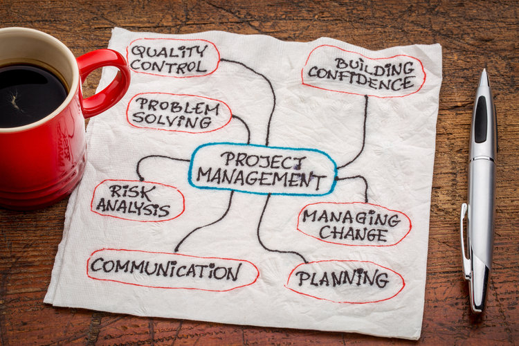 Project Management Professional Certificate Program Consulting