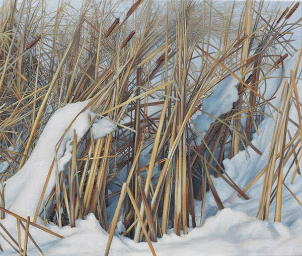 Winter (Reeds), oil on canvas, 22 x 26, $2,500