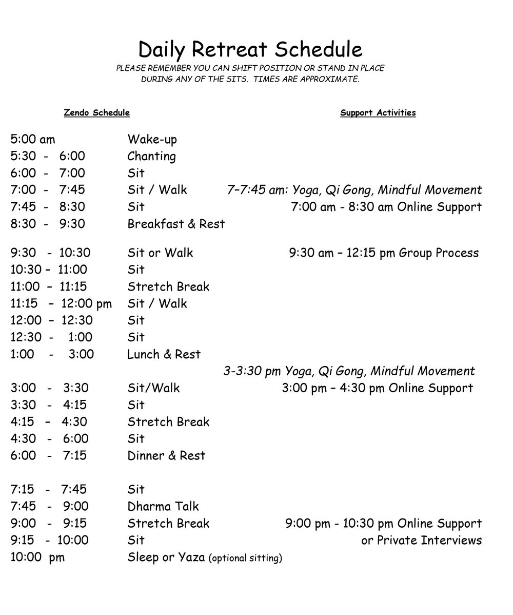 daily schedule vsi retreats vipassana support international