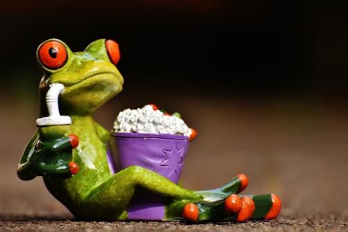 frog-1672887_960_720.jpg