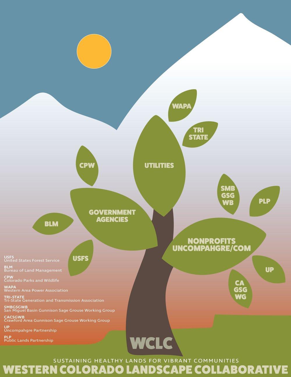 WCLC Infographic
