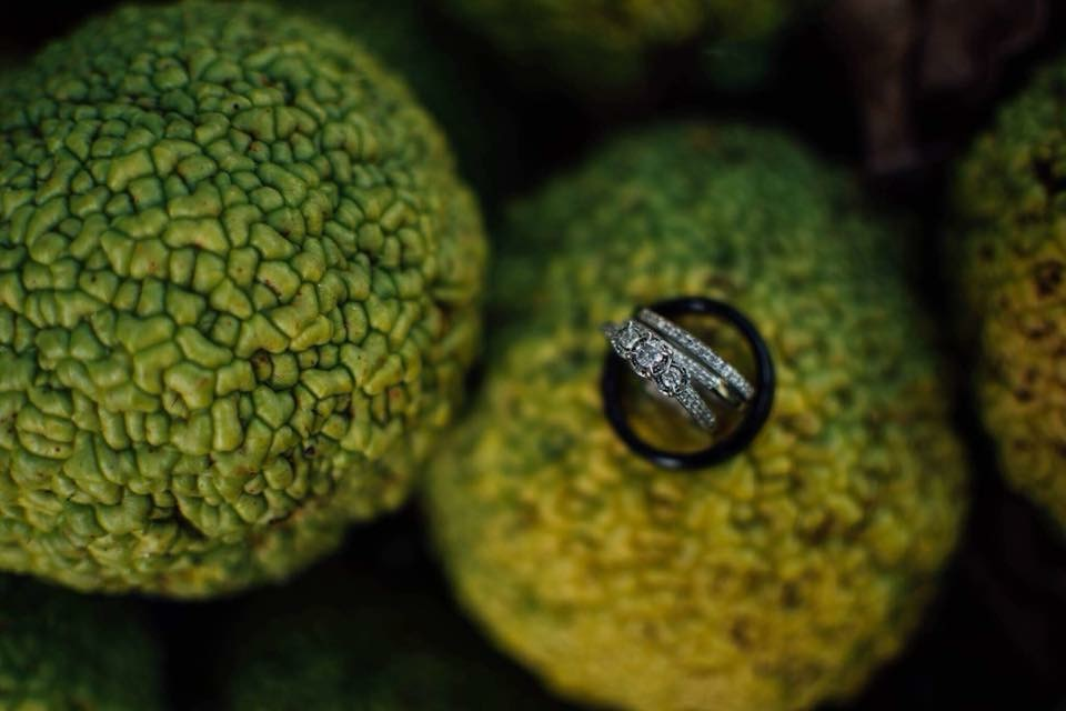 A venue specialty - Osage oranges! | Kingsport, TN Wedding Photography