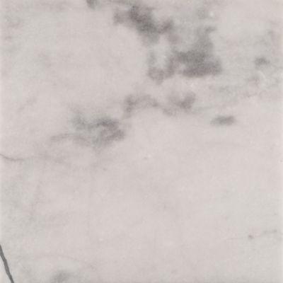 {Kitchen Countertop} Bianca Helena Field Tile