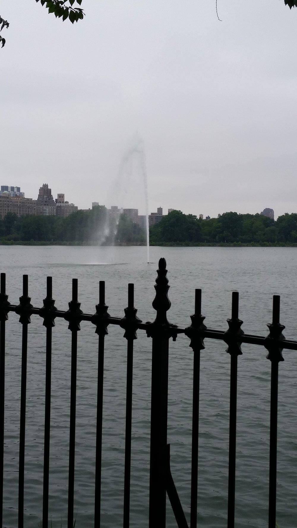central park5.jpg
