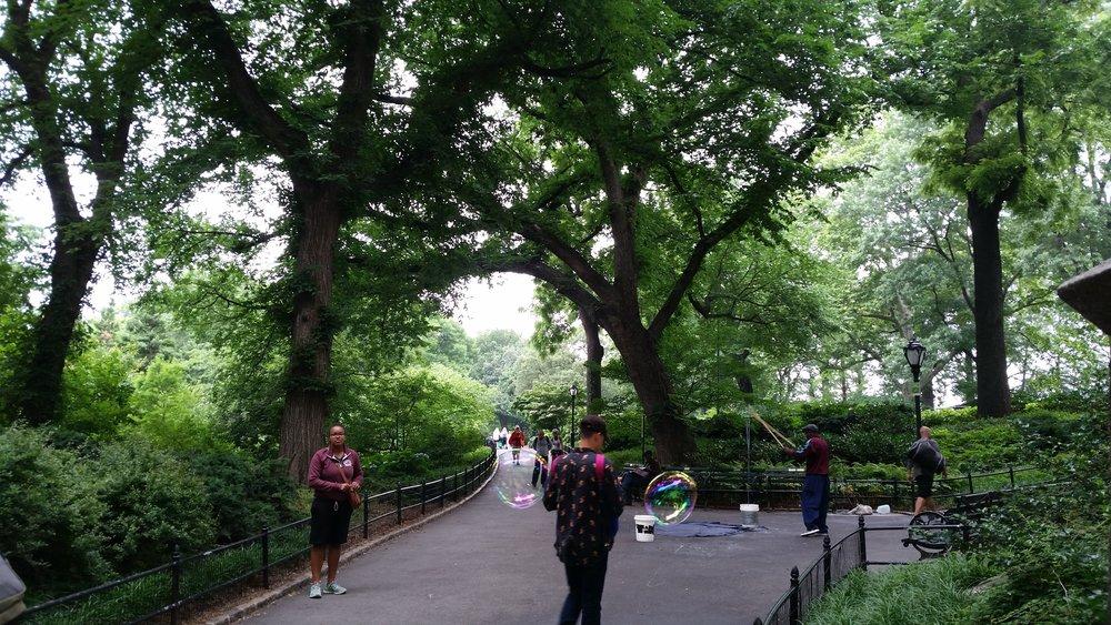 central park10.jpg