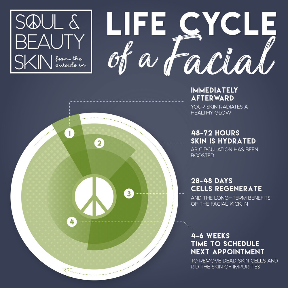 Life Cycle of Facial.jpg