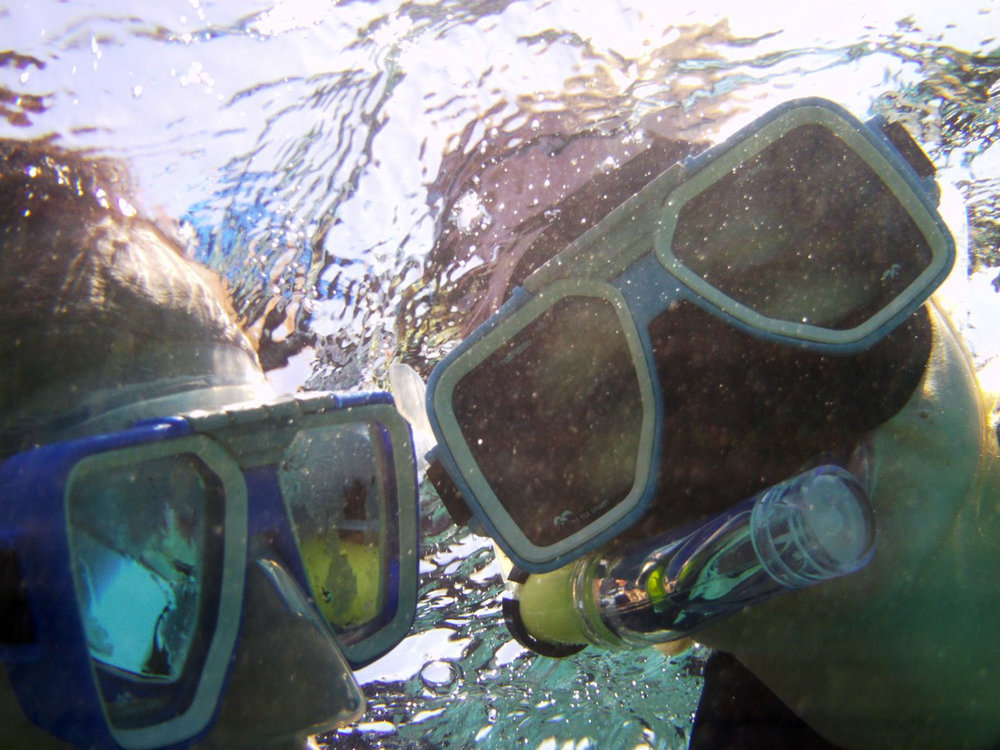 Snorkelling_web.jpg