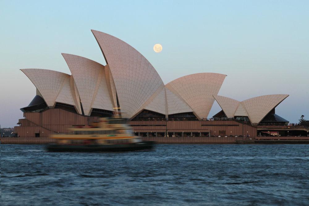 Opera_House_Ferry_FINAL.jpg