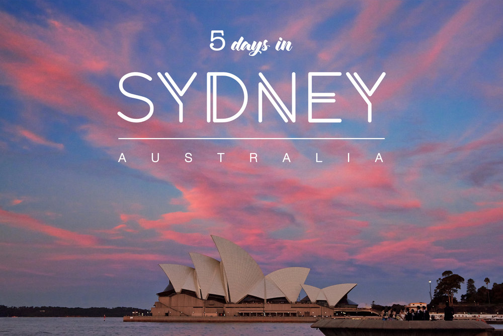 5 days in Sydney   Darling Harbour, the City, Bondi Beach & the Blue Mountains