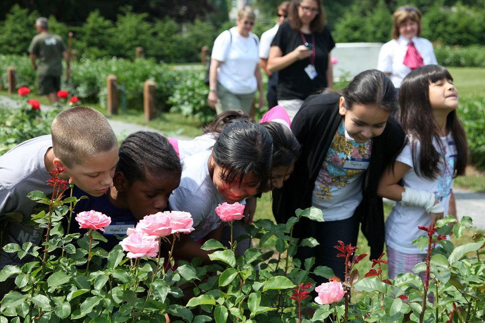 Children enjoying a garden at Roosevelt-Vanderbilt National Historic Sites