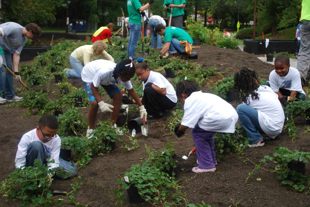 Children participate in urban volunteer work