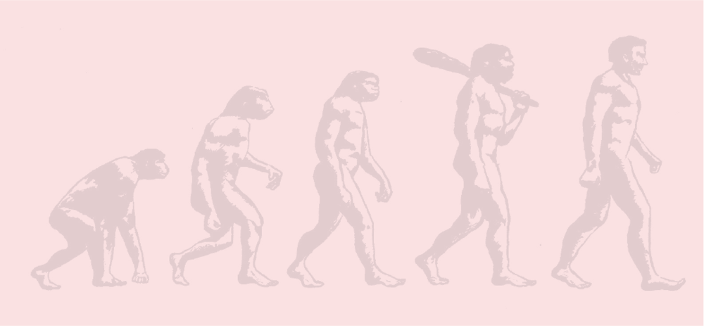 EvolutionAsset 1.png