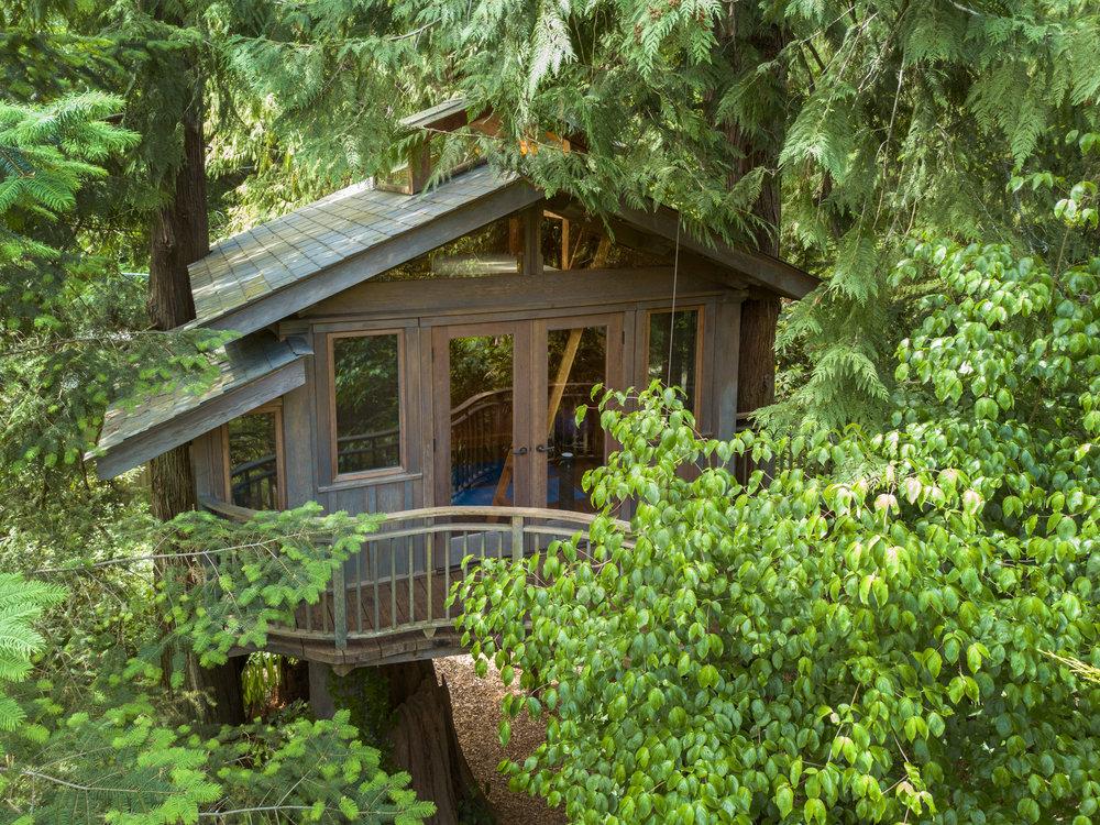 5 aerial treehouse.jpg