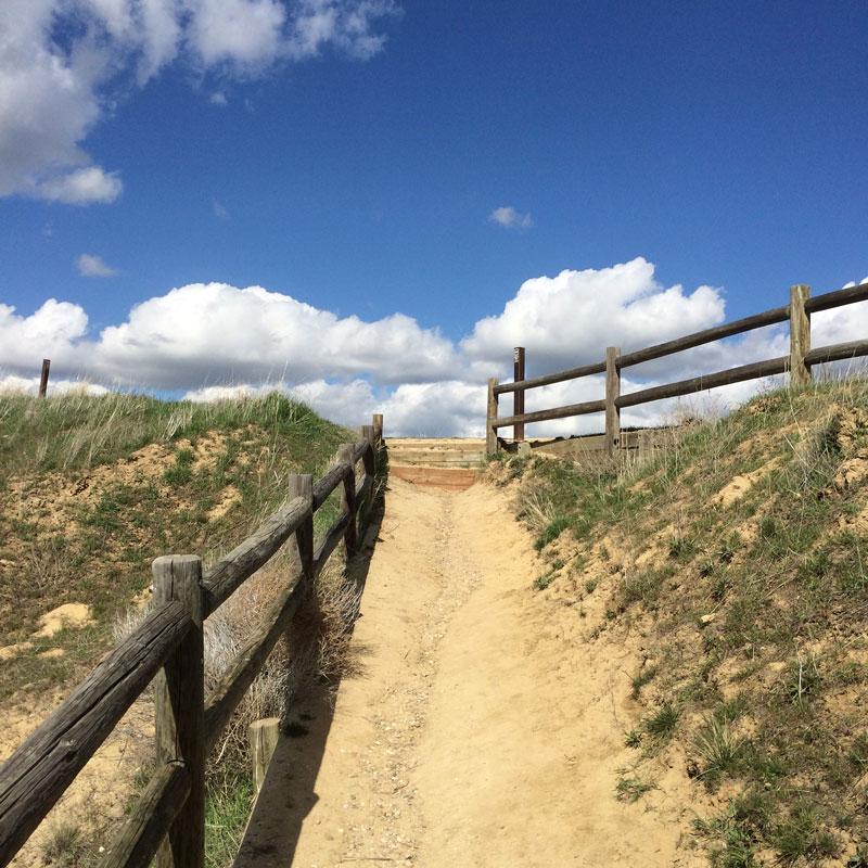 Sunny trails beckon in Boise.