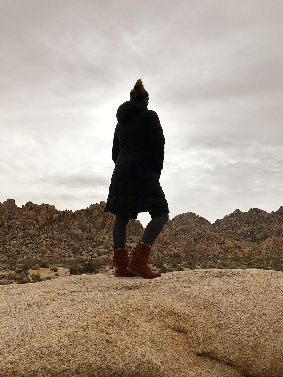 A chilly day in Joshua Tree National Park.