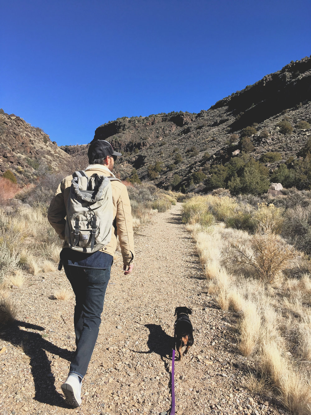 5 Favorite Day Hikes in Taos | Busy Campers: An Airstream Travel Journal