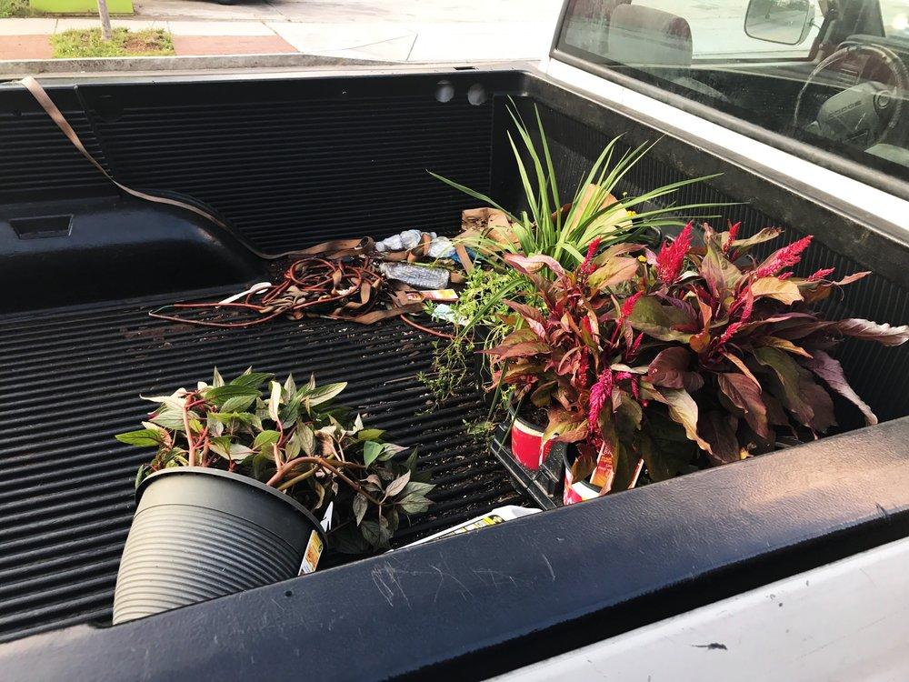 august plants truck