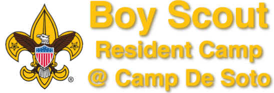 Boy Scout Camp Logo.jpg