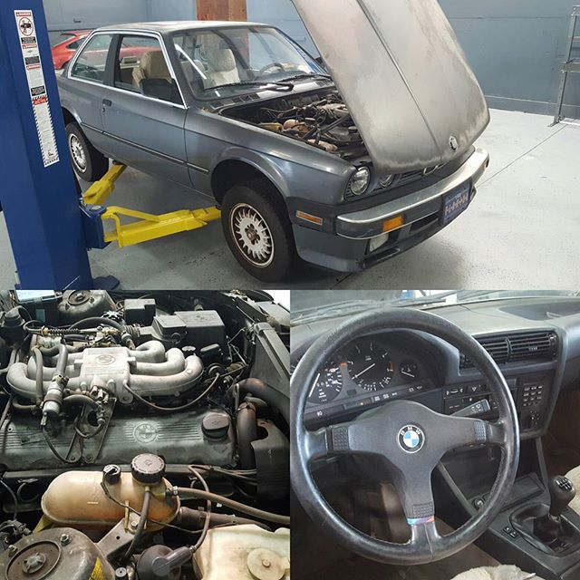 Another #project at #Panzerperformance . We got this #1owner #325es in for a little bit of #Tlc . She's been sitting for 2 years. Runs and drives like a dream. Ac is even cold. #staytuned #e30 #bmw #m20 #florida  #sarasota #Bradenton #shop