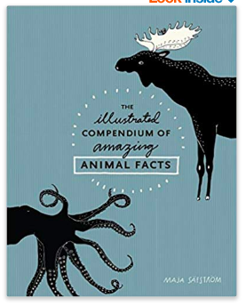 Christmas gifts for kid animal lovers